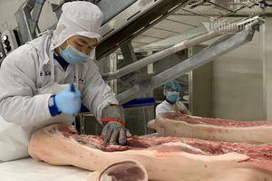 Thịt lợn giá tăng kỷ lục, khuyên dân tìm loại thịt khác để ăn