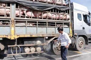 Tuyên truyền người dân không buôn bán, vận chuyển sản phẩm từ lợn qua biên giới