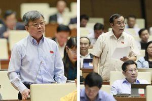 Clip: Đại biểu QH chất vấn Chánh án Tối cao về vụ cưa gỗ khô