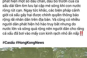 Không xử phạt người đăng tin cá sấu lớn nổi đầu trên sông ở Cà Mau