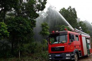 Thực hiện hiệu quả công tác bảo vệ và phát triển rừng