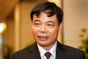 Bộ trưởng Bộ Nông nghiệp: Cây dừa có thể trở thành 'cây tỷ phú'