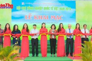Khai mạc Hội chợ Nông nghiệp Quốc tế Việt Nam năm 2019