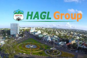 HAGL Group (HAG): Quý III/2019, lợi nhuận sau thuế âm 560 tỷ đồng
