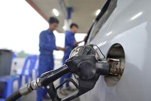 Đại gia bán lẻ xăng dầu lãi mỗi ngày 16 tỷ đồng