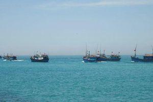 Chưa liên lạc được với 33 ngư dân ở phía Tây Trường Sa