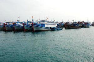 44 tàu thuyền Việt Nam vào Philippines trú tránh bão số 6
