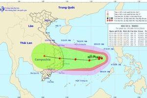 Hiện tượng thời tiết đặc biệt, cùng lúc xuất hiện đến 4 cơn bão và áp thấp nhiệt đới trên dải đại dương