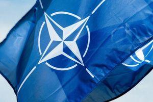 Nghị sĩ Thụy Điển đề nghị Stockholm gia nhập NATO vì sự 'gây hấn' của Nga