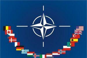 Tổng thống Pháp: NATO đang trải qua giai đoạn 'tê liệt'