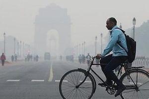 20 triệu dân New Delhi 'tắc thở' vì khói mù