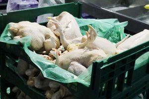 Trung Quốc cân nhắc dỡ bỏ hạn chế nhập khẩu sản phẩm gia cầm từ Mỹ