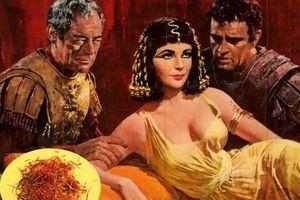 Saffron: 'Mỹ phẩm' cho cả sức khỏe và làm đẹp, bí thuật dưỡng nhan của các bà hoàng Trung Đông