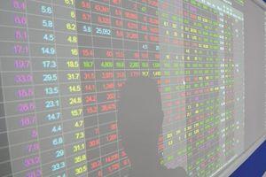Cổ đông lớn của FID bị phạt hàng trăm triệu đồng liên quan đến công bố giao dịch cổ phiếu