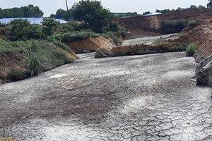 Trại gà 'bức tử' môi trường bị xử phạt hơn 400 triệu đồng