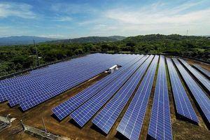 Bộ trưởng Trần Tuấn Anh: Đã có sự chủ quan, đánh giá không hết về khả năng thực hiện các dự án điện mặt trời