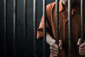 Romania phạt tù những người chậm đóng bảo hiểm và trốn thuế
