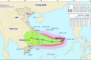 Thủ tướng yêu cầu ứng phó khẩn cấp với bão số 6