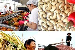 Làm sao giúp Bộ trưởng Nông nghiệp đoán được giá nông sản?