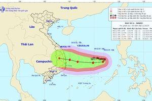 Bão Nakri đổi hướng dị thường, khả năng đi vào đất liền từ Quảng Ngãi đến Khánh Hòa