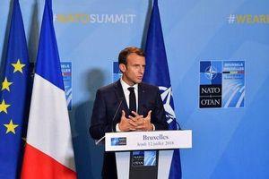 Đức, Mỹ phản ứng về phát ngôn NATO đang 'bị chết não' của Tổng thống Pháp
