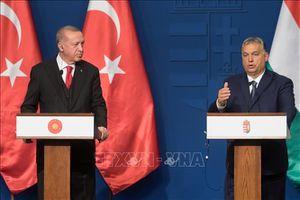 Thổ Nhĩ Kỳ sẽ mở cửa 'có chừng mực' người di cư