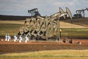 Giá xăng dầu hôm nay 8/11 đồng loạt tăng mạnh
