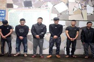 Bắt nhóm đối tượng nghiện hút thực hiện 70 vụ trộm chó