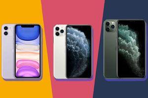 3 lý do nên mua iPhone 11 thay vì iPhone 11 Pro hay iPhone 11 Pro Max