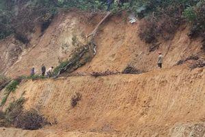 Cán bộ bảo vệ rừng ở Quảng Trị bị kẻ lạ hành hung tại trụ sở