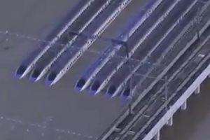 10 đoàn tàu trị giá 135 triệu USD thành sắt vụn sau bão Hagibis