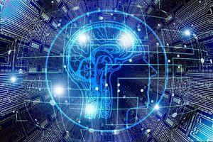 AI Việt - đầu tư vào các hoạt động bài bản