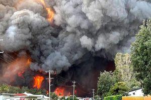 Hãi hùng cảnh cháy rừng dữ dội như tận thế ở Australia