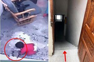 Xem mèo nhà nhanh trí cứu em bé thoát nạn trong gang tấc