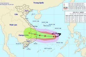 Bão số 6 hướng vào Quảng Ngãi đến Khánh Hòa, dự báo gây mưa lớn, lũ quét