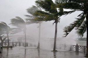 Bộ GD&ĐT ra công điện về ứng phó với bão số 6