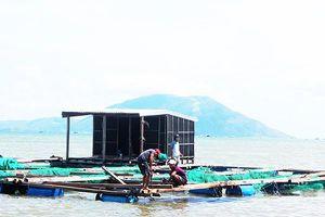 Ứng phó bão số 6, Khánh Hòa yêu cầu người lao động trên biển vào bờ