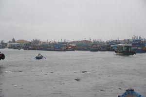 Bão số 6 sắp đổ bộ: Bình Định khẩn trương di dời dân vùng ven biển