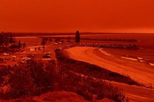 Hãi hùng cảnh cháy rừng dữ dội 'như tận thế' ở Australia