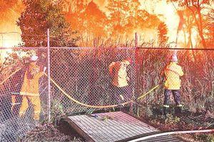 Cháy rừng tại Ô-xtrây-li-a gây thiệt hại nghiêm trọng