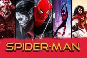 Tất cả phim Spider-Man đang được sản xuất: MCU, Vũ trụ nhân vật phản diện và hoạt hình!