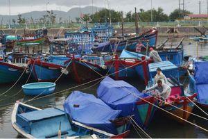 Công tác phòng chống bão số 6 tại các tỉnh Nam Trung Bộ
