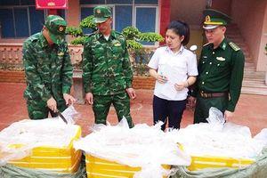Nhức nhối nạn buôn lậu nội tạng động vật trên tuyến biên giới Lạng Sơn