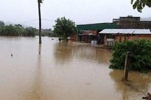 Đắk Lắk: Mưa bão gây ngập lụt cục bộ