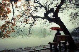 Miền Bắc sắp đón gió mùa Đông Bắc: Trời trở rét, có mưa dông