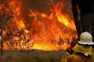 Nước Úc vật lộn với các vụ cháy rừng tồi tệ nhất trong 1 thập kỷ