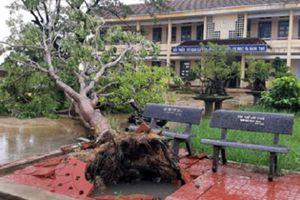 Bão số 6 đổ bộ, hơn 1 triệu học sinh nghỉ học để tránh bão