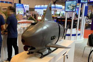 Trung Quốc hé lộ tàu lặn cá mập chống biệt kích người nhái