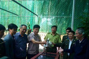 Vườn Quốc gia Vũ Quang (Hà Tĩnh): Tiếp nhận 1 cá thể cò mỏ thìa, thuộc loài động vật nguy cấp, quý hiếm