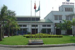 Vinachem muốn bán 27% vốn tại công ty sở hữu thương hiệu Sơn Đại Bàng